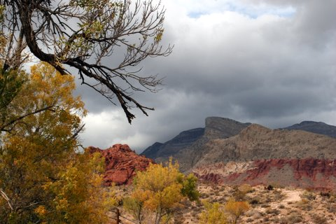 Calico Basin with Turtle Head Rock in background. Taken from Red Springs by Susie Hadland.